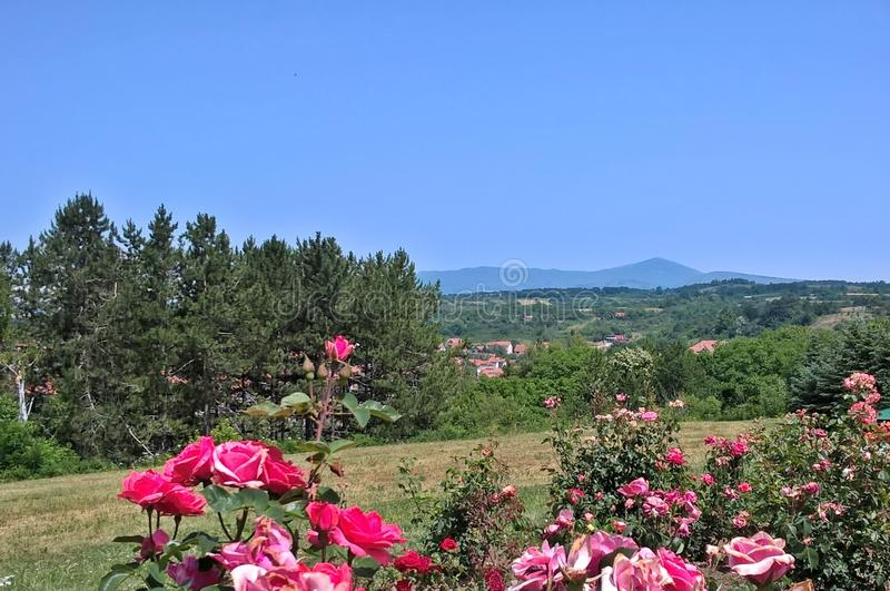 Горный вид - волшебная гора Rtanj, восточная Сербия, пиковое Siljak, 1565 m стоковое изображение rf