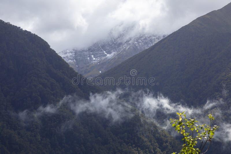 горный вид в Новой Зеландии стоковая фотография rf