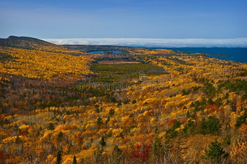горный вид Мичигана падения цветов стоковое фото rf