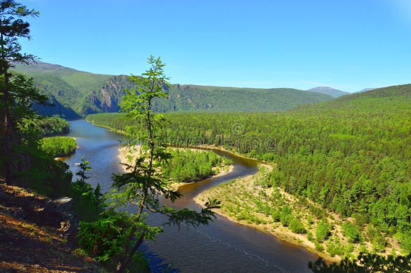Горный вид реки горы Ландшафт лета одичалой природы Восточный Сибирь, Россия стоковые изображения rf