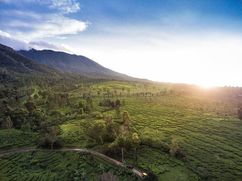 Горный вид, Bogor, Индонезия стоковые фотографии rf