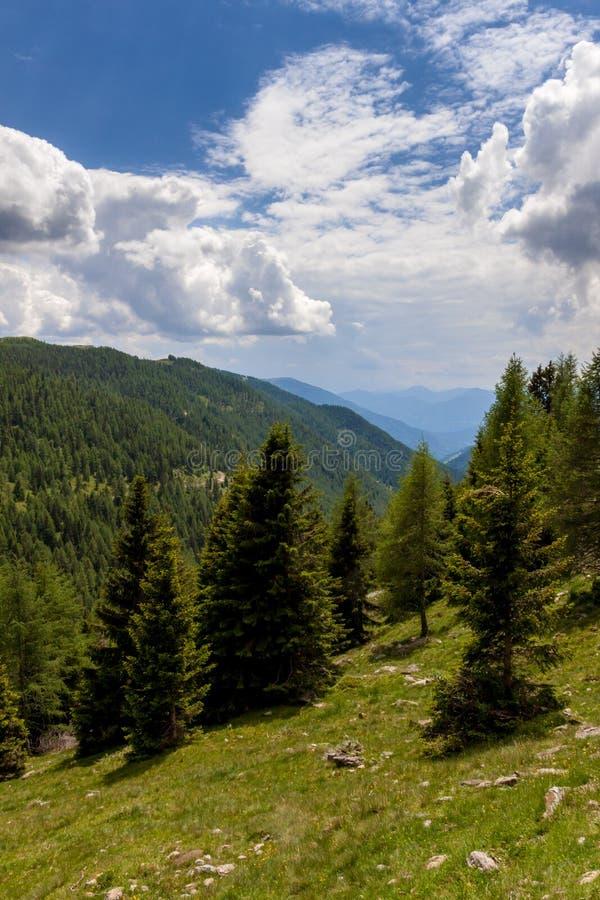 Горный вид в Альпах стоковое фото