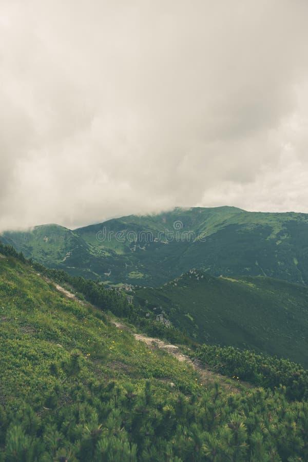 Горный пик в облаке стоковая фотография