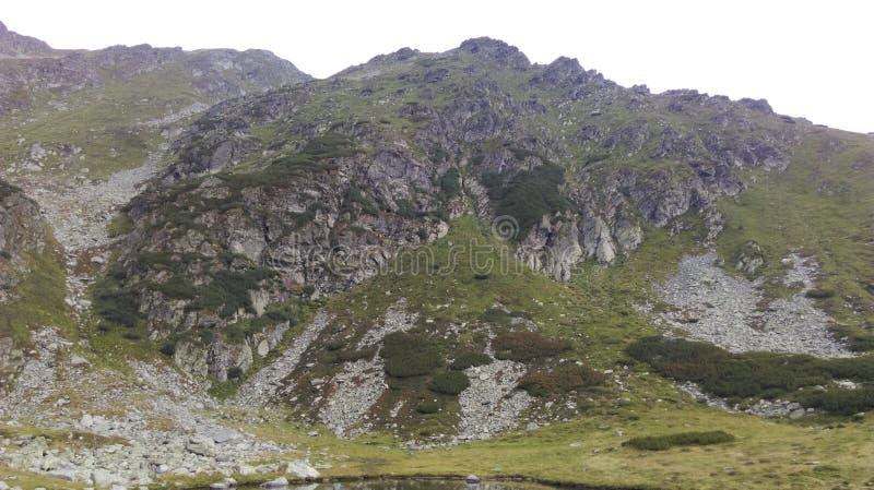 Горный пик на Rodna стоковое изображение rf