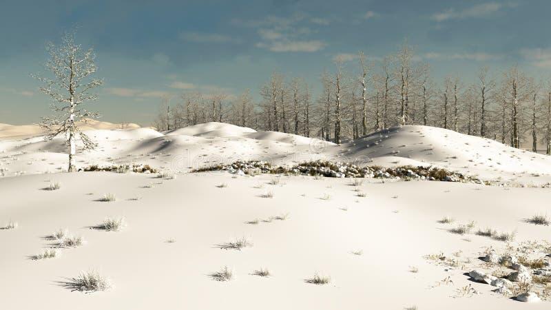Горный склон зимы Snowy иллюстрация вектора