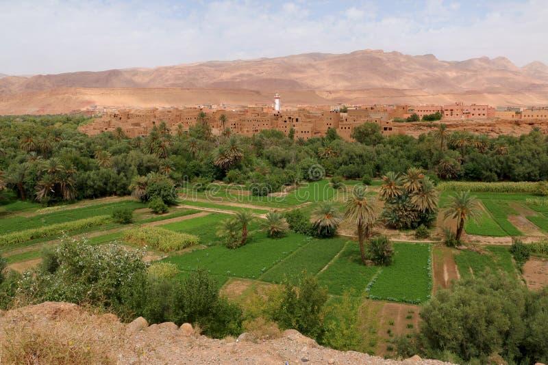 Городок оазиса Tinghir в Марокко стоковые изображения rf