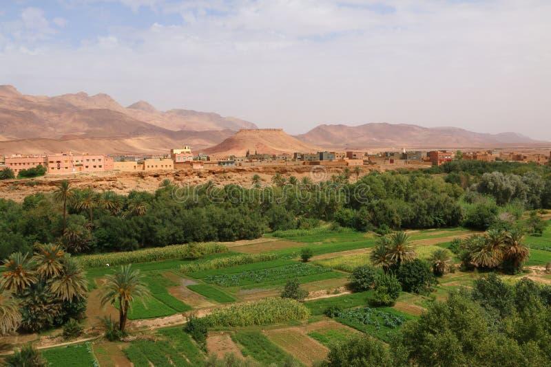 Городок оазиса Tinghir в Марокко стоковые изображения