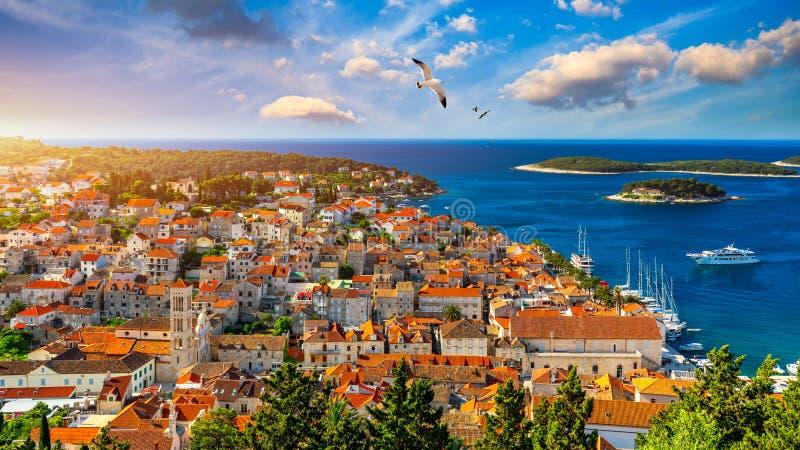 Городок Hvar с летанием чайки над городом, известным роскошным назначением перемещения в Хорватии Шлюпки на острове Hvar, одном и стоковые фотографии rf