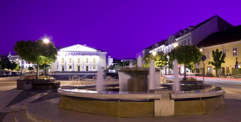 городок vilnius залы фонтана стоковые фото