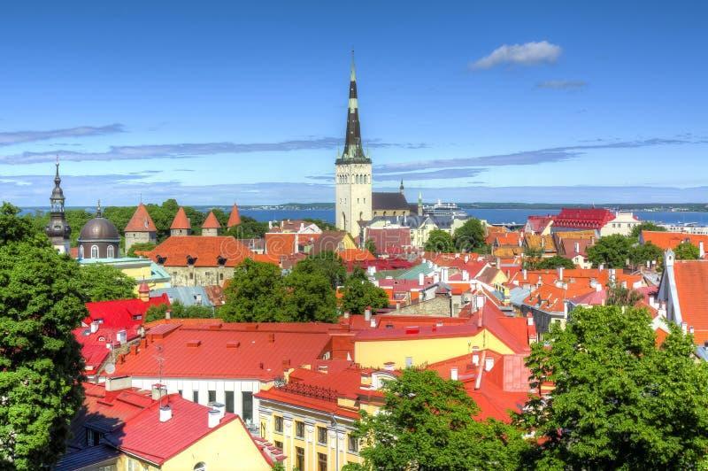 Городской пейзаж Таллина с kirik Oleviste церков ` s St Олафа, Эстонией стоковое изображение