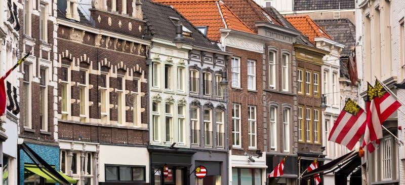 Город Нидерланд bosch вертепа стоковая фотография rf