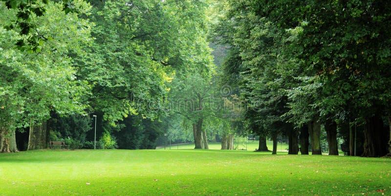 город-парк стоковое изображение rf