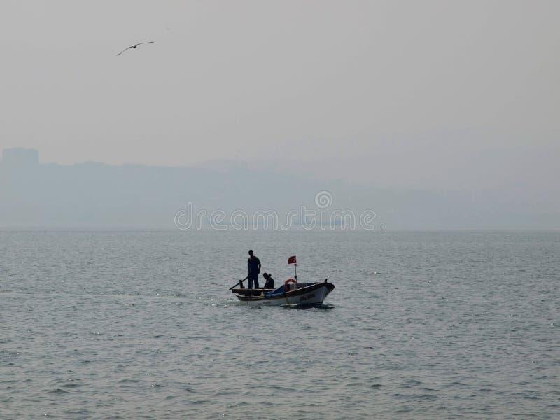Город птицы шлюпки охотника моря голубой удя стоковое изображение