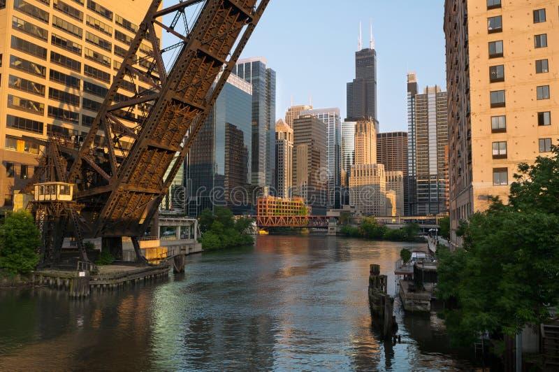 город chicago цветастый стоковая фотография rf