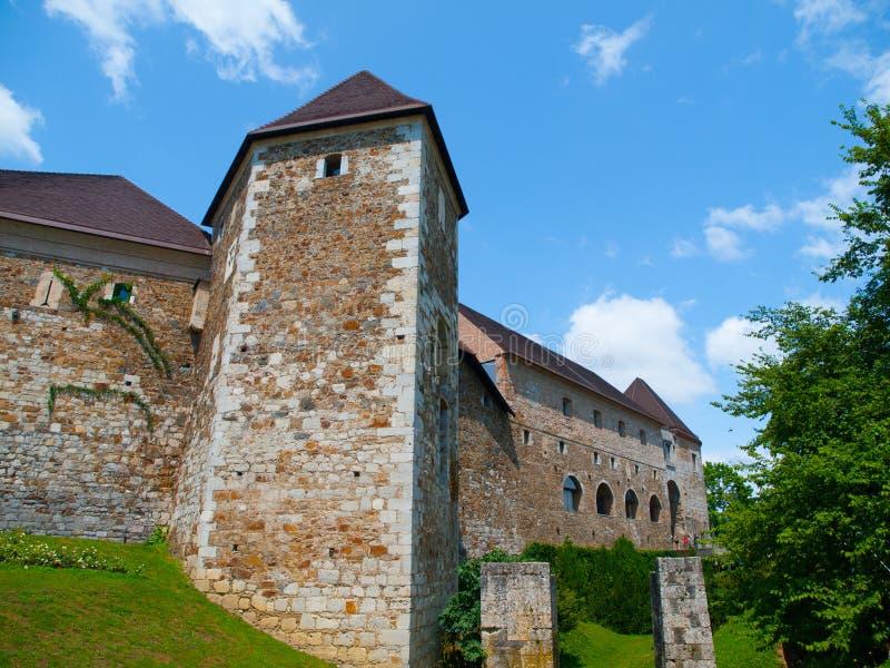 Городище замка Любляны стоковое фото rf