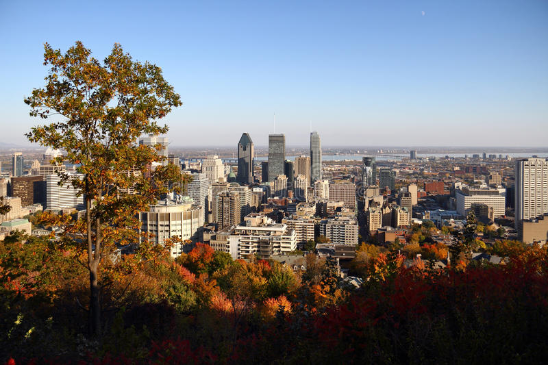 Город Монреаля во время падения стоковые фото