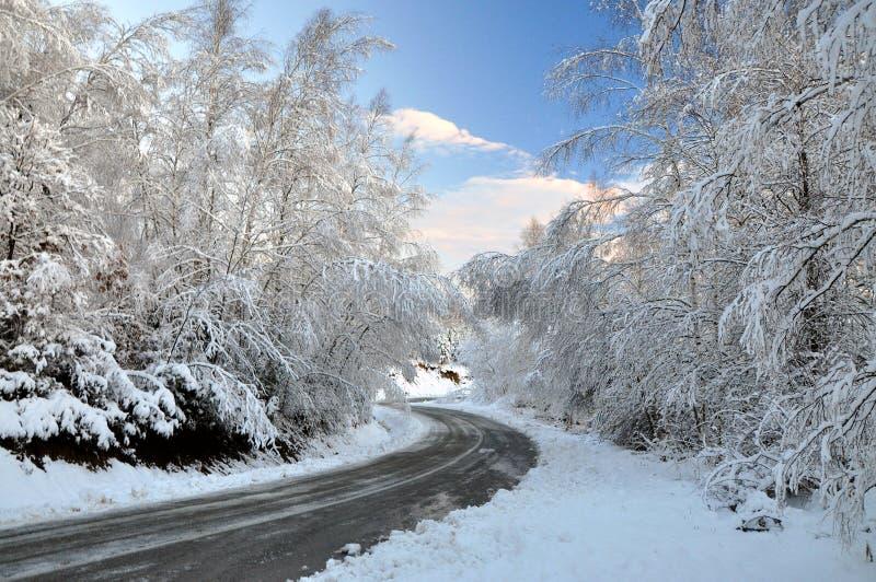 город около железнодорожной дороги светит солнцу снежка к древесине зимы стоковые изображения