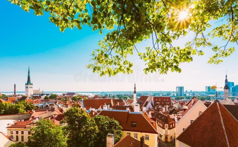 Городок Таллин города сценарного ландшафта взгляда старый, Эстония стоковое фото rf