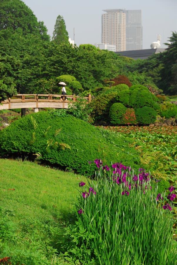 Город-сад стоковое фото rf