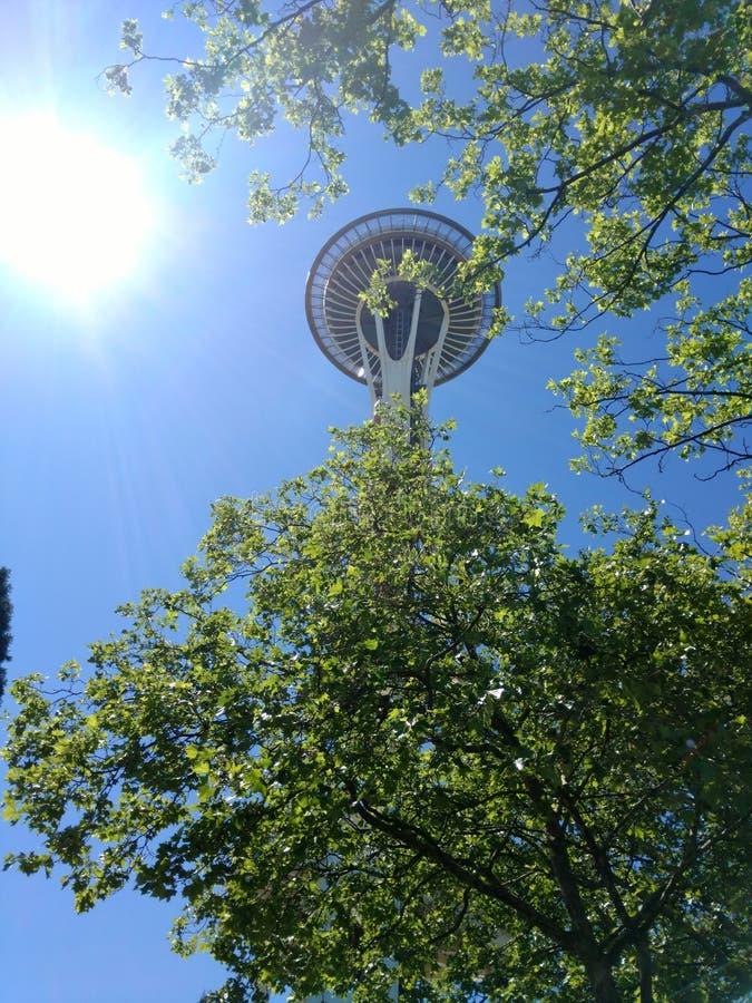 Город Сиэтл стоковая фотография rf