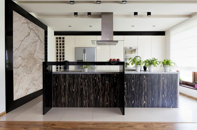 Городская квартира - мебель кухни стоковые изображения rf