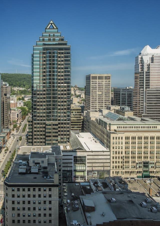 Городской коллеж McGill buidings стоковые изображения