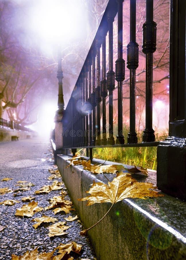 Городской пейзаж ночи в осени стоковые фотографии rf