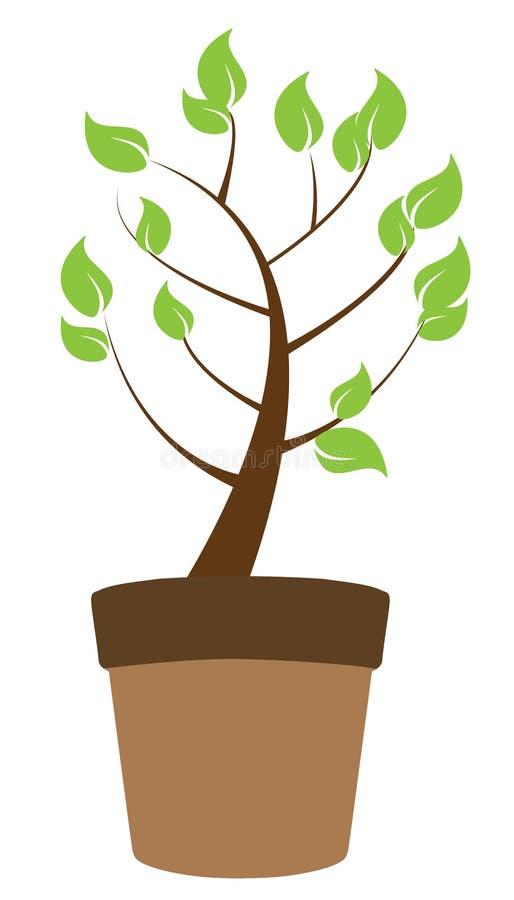 Горшечное растение иллюстрация вектора