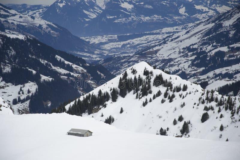 Горы Адельбодена стоковое изображение rf