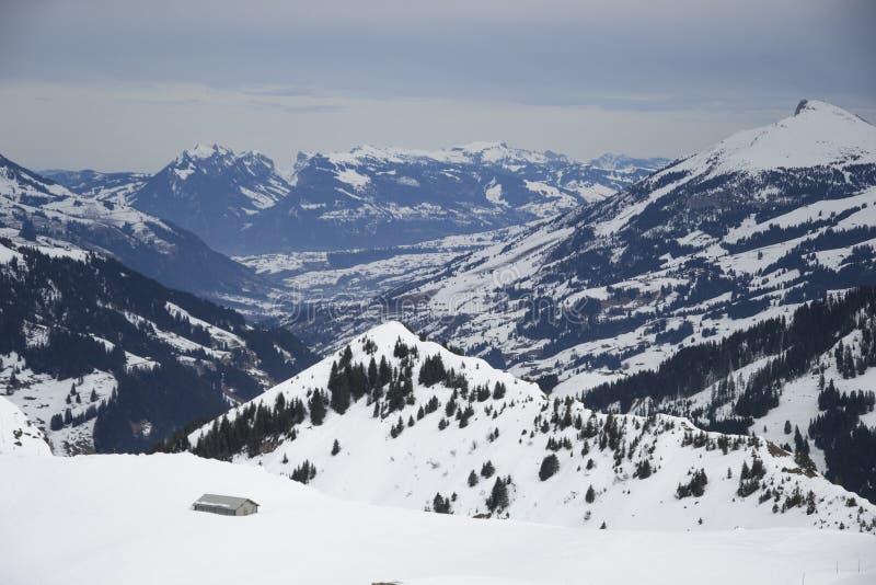 Горы Адельбодена стоковое изображение