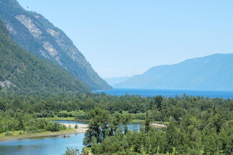Горы Алтай, озеро Teletskoe стоковые фото