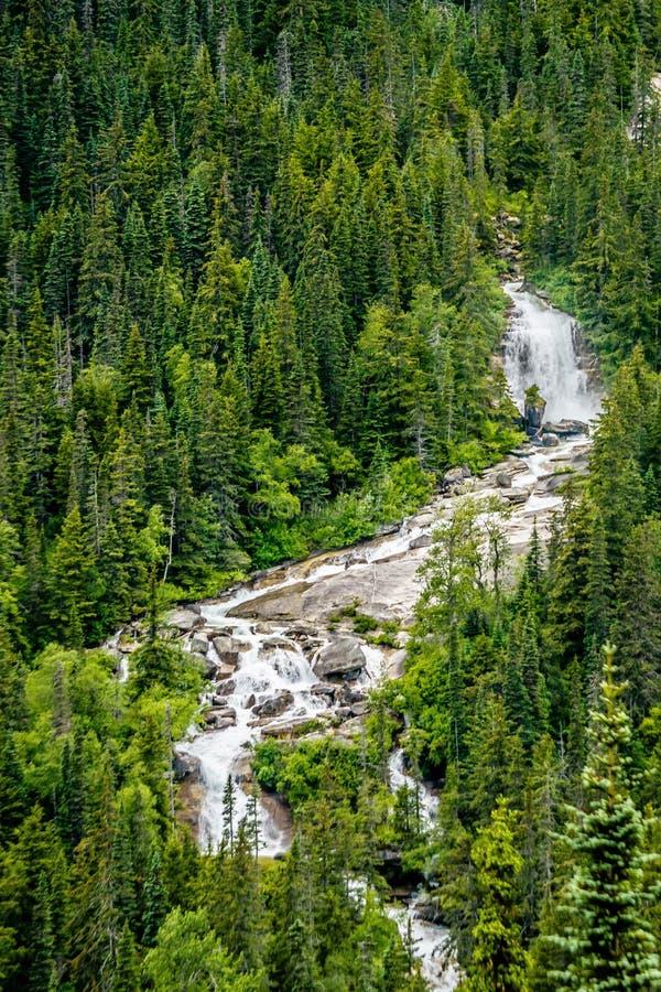 Горы Британской Колумбии гостиницы горной цепи аляскские скалистые стоковые фото