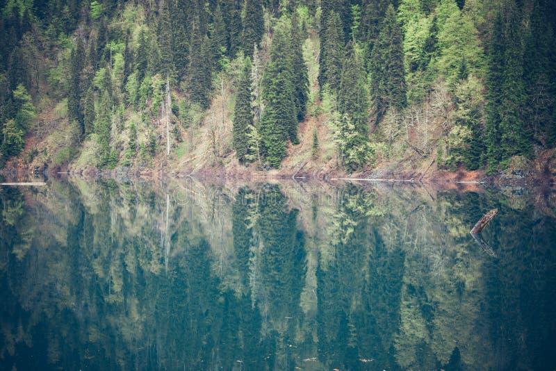 Горы благоустраивают с видом на озеро стоковое фото rf
