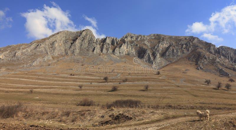 горы высочества стоковая фотография