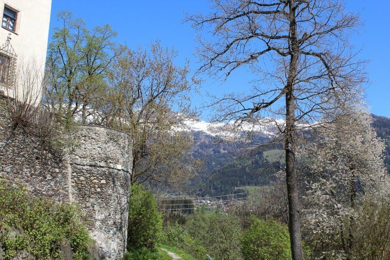Горы в Австрии около Burg Bruck, средневекового замка, с деревом стоковая фотография