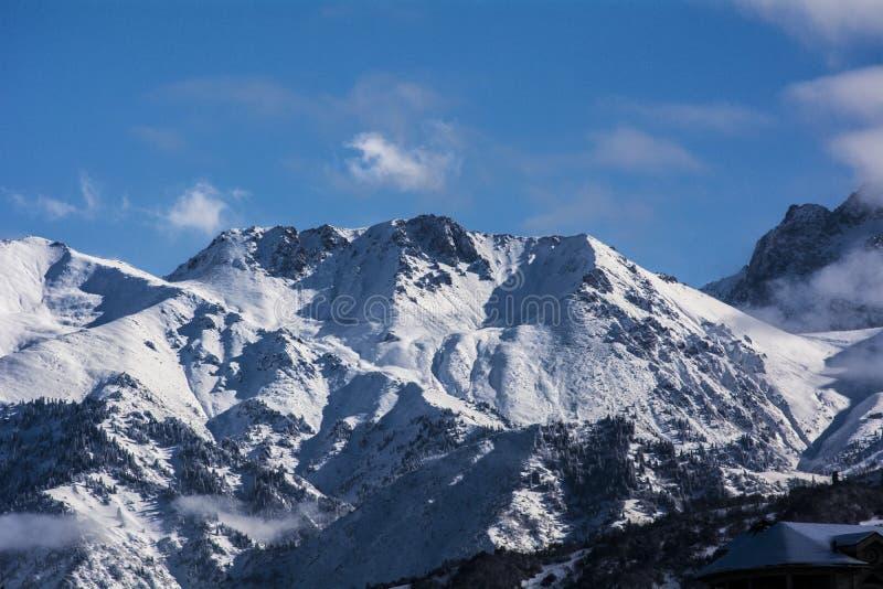 Горы в Алма-Ате стоковое изображение rf
