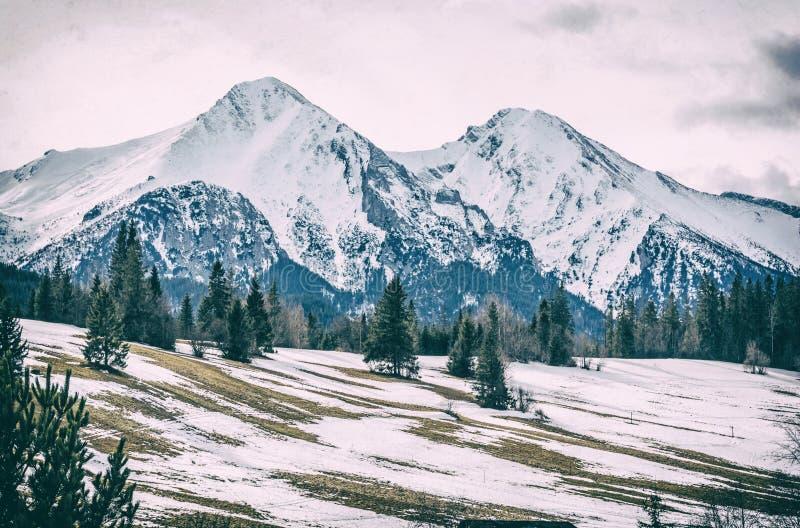Горы в зиме, сетноой-аналогов фильтр Belianske Tatry стоковое фото rf