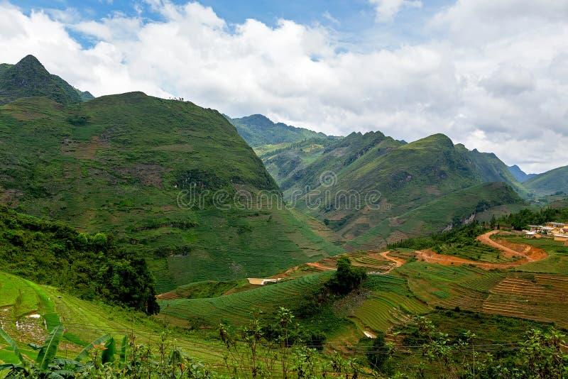 Горы в Ha Giang, Вьетнаме стоковая фотография rf