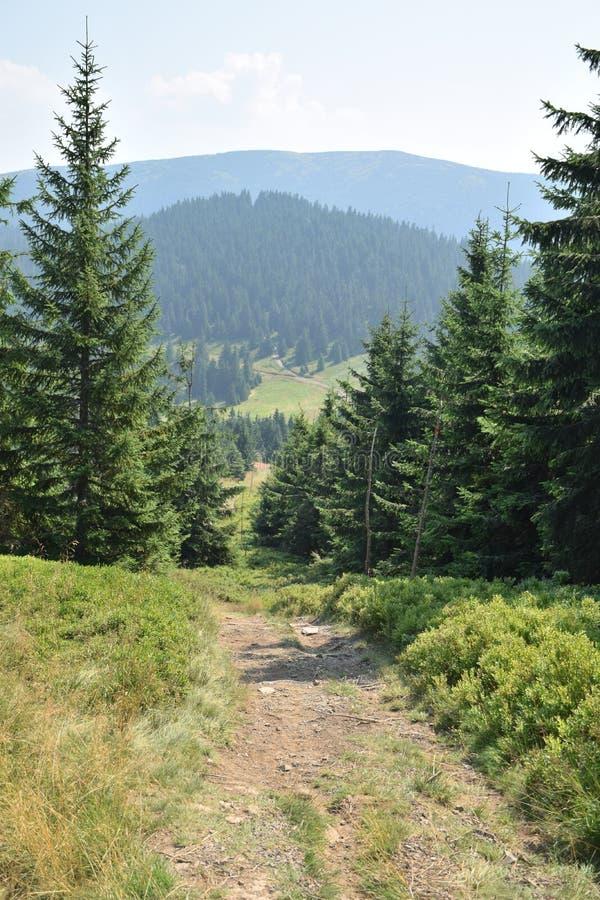 Горы заполированности Beskid стоковое фото