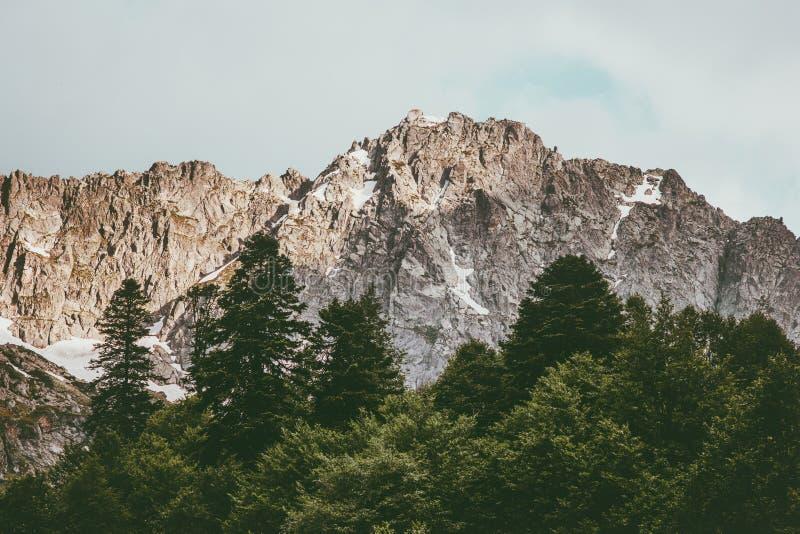 Горы захода солнца скалистые и coniferous лес стоковое изображение