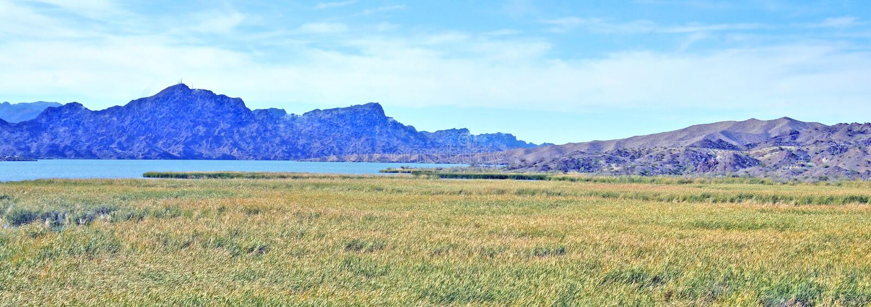 Горы и болото около Колорадо стоковое фото rf