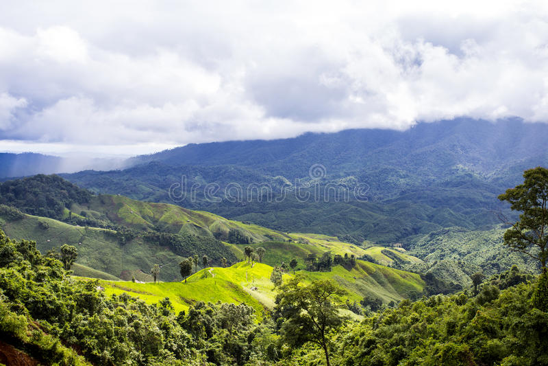 Горы и джунгли в (Nan) Таиланде стоковое изображение