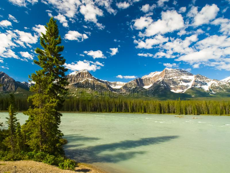 Горы и леса в Канаде стоковые фотографии rf