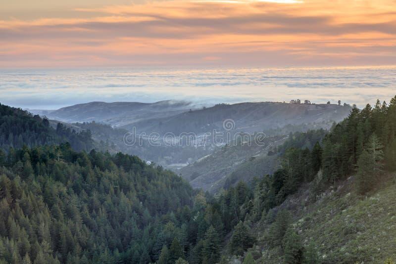 Горы и туман Santa Cruz над Тихим океаном стоковое фото