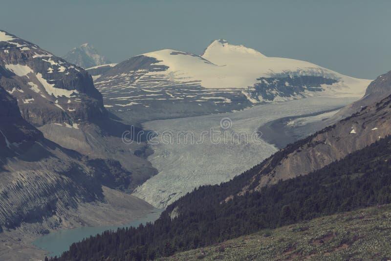 горы Канады стоковые фото