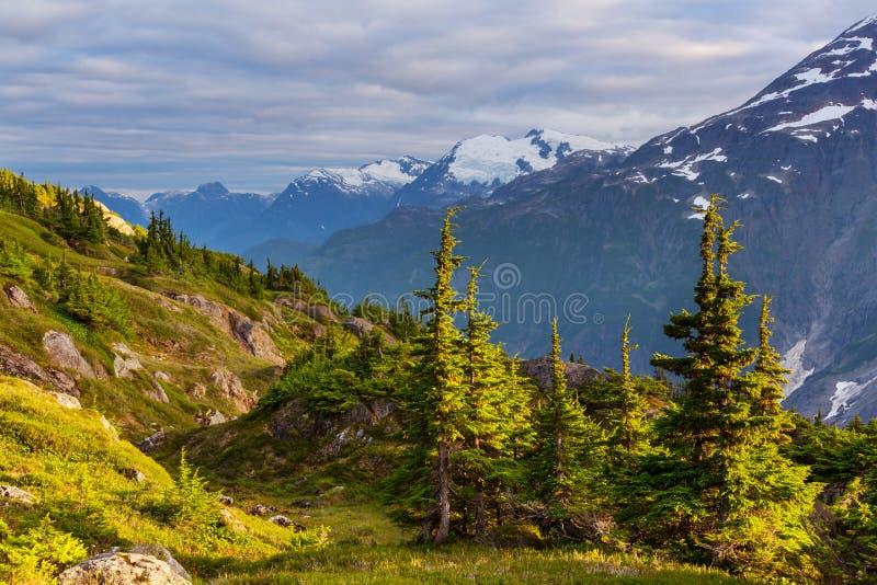 горы Канады стоковое фото