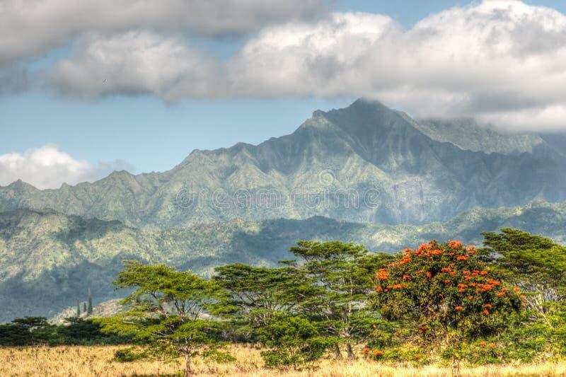 Горы Кауаи, Гаваи стоковое изображение rf