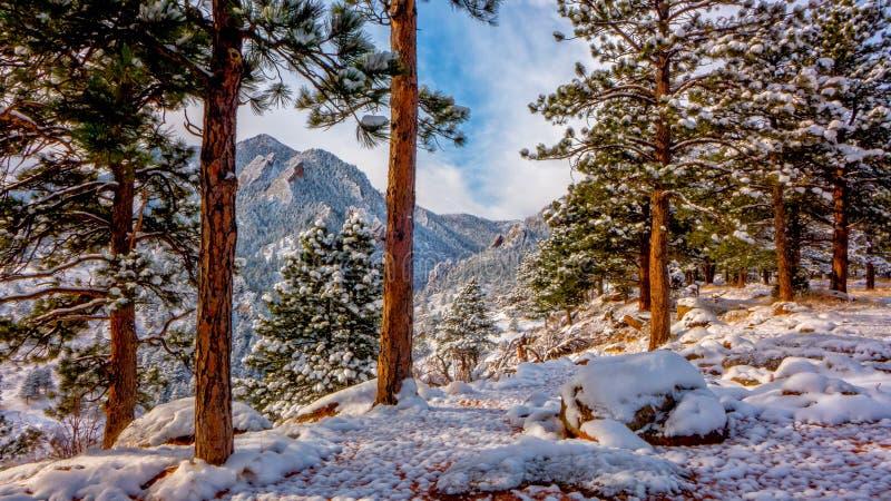 Горы Колорадо после снежностей стоковое фото rf