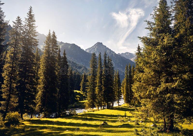 Горы Кыргызстана стоковое изображение rf