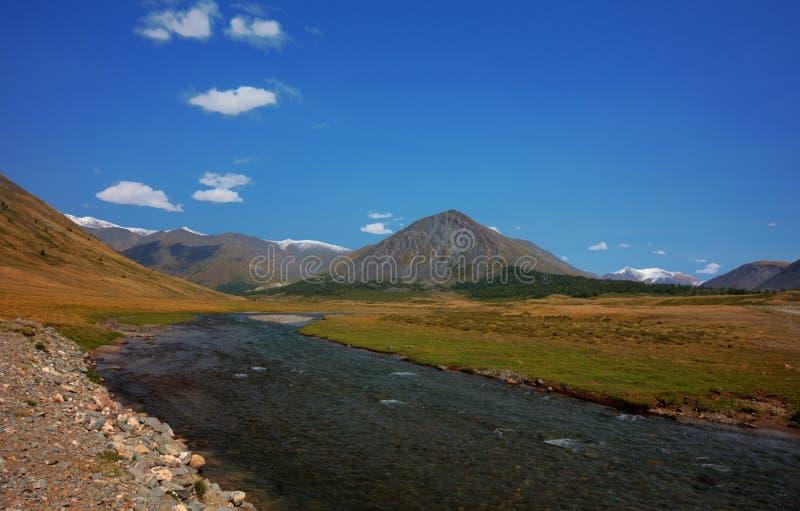 горы ландшафта гористой местности altai красивейшие стоковые фотографии rf